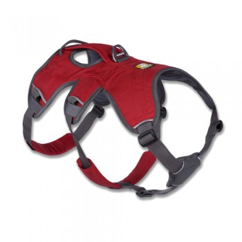 Web Master™ Harness Hundegeschirr M / Red Currant